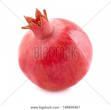 One pomegranate in closeup