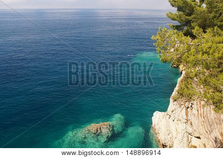 The Threat To Rocky Shore,horizon, Rocks, Flora And Fauna