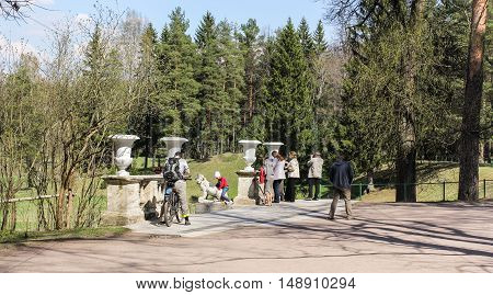 St. Petersburg, Russia - 3 May, Tourists in the Park, 3 May, 2016. People and spring landscape in Pavlovsk park.