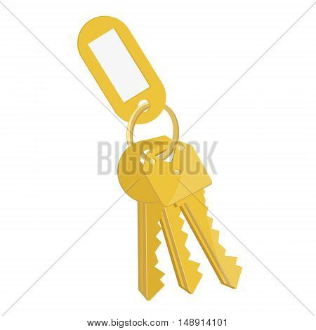 Vector illustration blank golden tag and golden keys. Bunch of keys with keychain isolated on white background
