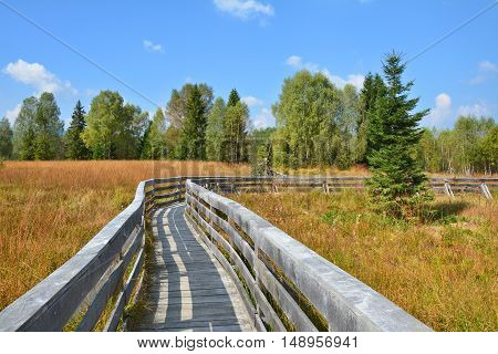 Path through the peat bog in Poland Bieszczady National Park