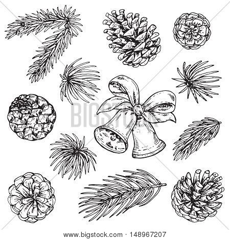 Collection of pine cones and Christmas bells. Black and white hand drawn graphic sketch vector illustration.