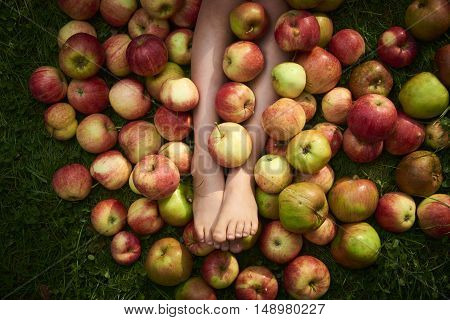 Children's feet hidden in a pile of apples
