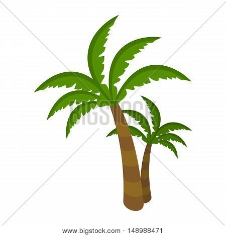 Palm tree isolated on white background. Arecaceae. Restricted to tropical, subtropical, and warm temperate climates. For posters, banners. Part of series of travelling around the world. Vector