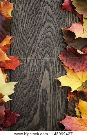 maple fall leaves on oak table border photo, copy space