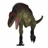 Tyrannotitan Dinosaur on White 3D Illustration - Tyrannotitan was a carnivorous theropod dinosaur that lived in the Cretaceous Period of Argentina. poster