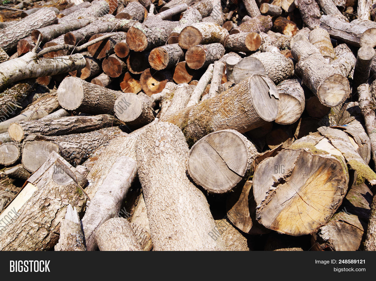 Getting Woodpile Ready For Winter >> Stack Firewood Wooden Image Photo Free Trial Bigstock