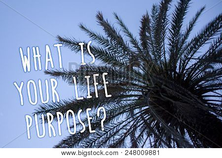 Handwriting Text What Is Your Life Purpose Question. Concept Meaning Personal Determination Aims Ach