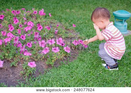 Cute Little Asian 18 Months / 1 Year Old Toddler Baby Boy Child Suffer From Pollen Allergy At Beauti