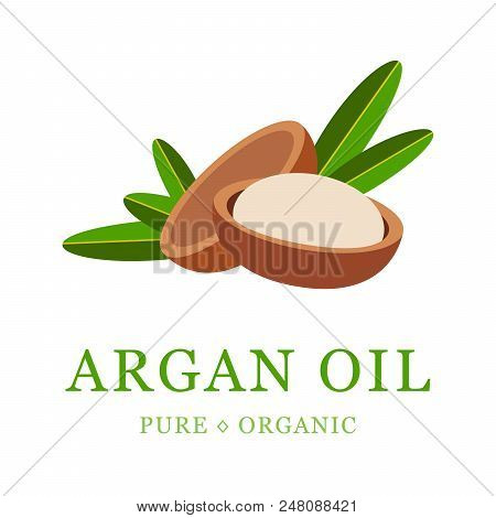 Argan Oil Skin Care Cosmetic. Argan Seeds, For The Production Of Oil. Very Nutritious For Skin And H
