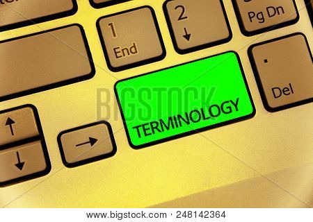 Text sign showing Terminology. Conceptual photo Collection of terms used by different profession study industry Keyboard key laptop creative computer brown keypad idea notebook netbook poster