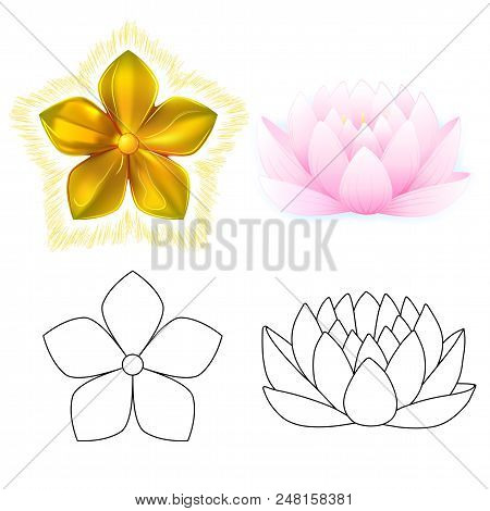 Gold Pattern Impossible Flower And Pink Lotus Metal Isolated On White Background (vector Illustratio