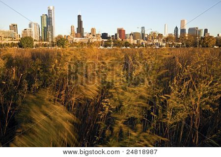 Chicago From Northerly Island