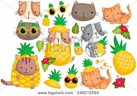 A Cat Vector Set With Pineapple Theme