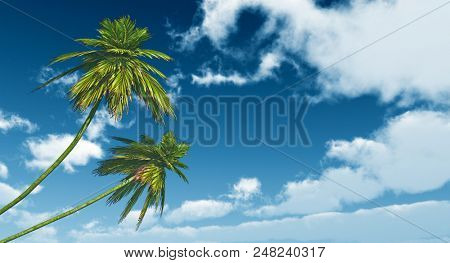two palms against the blue sky - 3D rendering