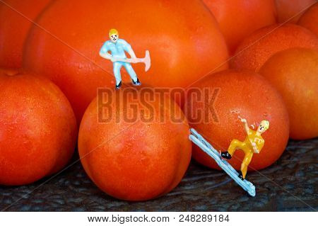 A Tiny Miniature Male Worker Figure With A Pick Standing On Top Of A Cherry Tomato While Another Tin