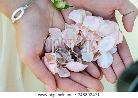 Unidentified Bride Holding Pink Petals And Engagement Rings, Close-up