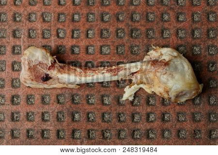 Piece Of Chicken Leg On Brown Table