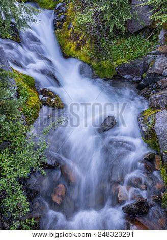 Small Cascade Along Paradise River In Wilderness Below Mount Rainier