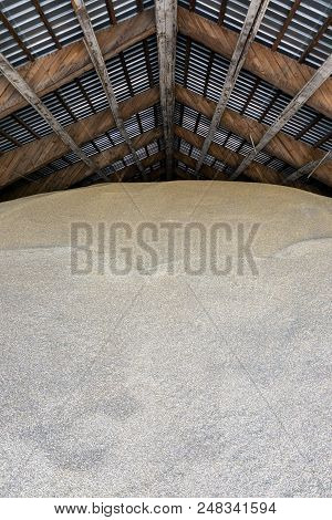 Close View On The Wheat Grains Inside The Warehouse