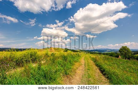 Beautiful Rural Landscape In Mountains. Lovely Summer Scenery. Road Through Agricultural Field Under
