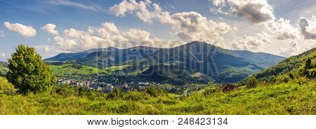 Beautiful Mountainous Countryside In Evening. Wonderful Landscape In Early Autumn. Tree On Grassy Hi