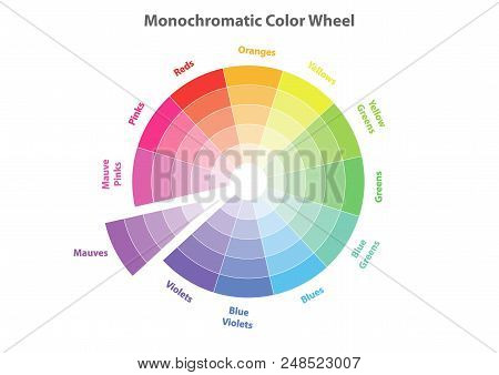 Monochromatic Color Wheel, Color Scheme Theory, Mauves Color In Evidence, Vector Isolated Or White B