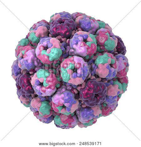 Polyomavirus, Dna Virus, Papovaviridae Family, 3d Illustration. Many Of Them Are Asymptomatic But So