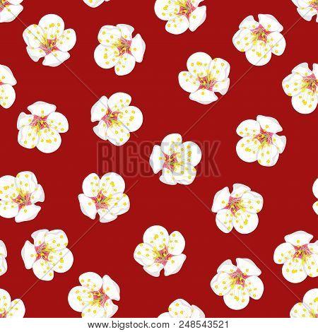 White Plum Blossom Flower Seamless On Red Background. Vector Illustration.