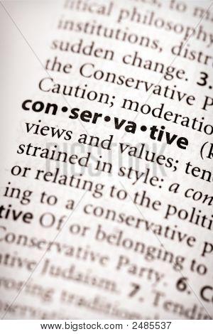 Dictionary Series - Politics: Conservative