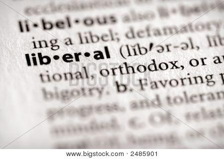 Dictionary Series - Politics: Liberal