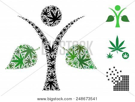 Ecology Man Collage Of Weed Leaves In Variable Sizes And Color Variations. Vector Flat Weed Leaves A