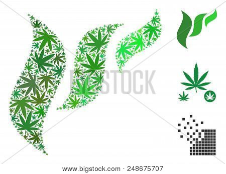Flora Abstraction Mosaic Of Weed Leaves In Variable Sizes And Color Tinges. Vector Flat Weed Leaves