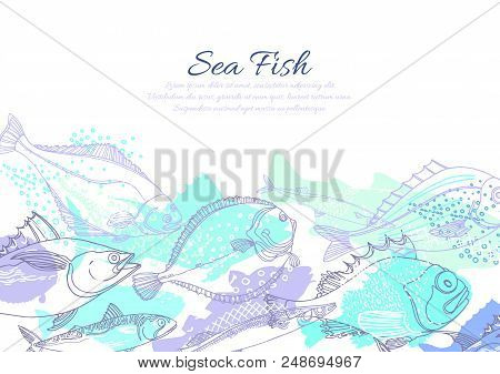 Vector marine template of nature seafish. Doodle art line abstract design. Color silhouette illustration. Graphic sketch, blue ocean background Perch, cod, mackerel, flounder, saira Organic fresh food poster
