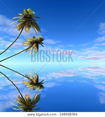 Palms trees reflecting in the water- 3D rendering