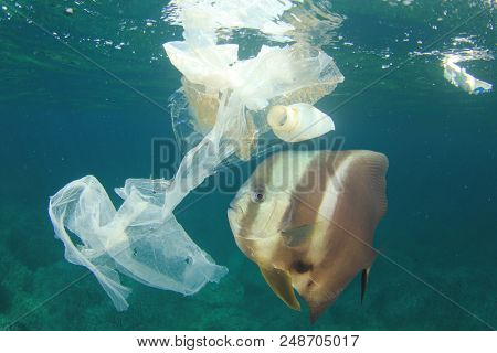 Plastic bags and bottles pollution in ocean with fish