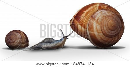 Upsizing Moving From A Smaller Home To A Bigger House As A Snail Leaving On Older Smaller Shell Towa