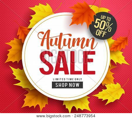 Autumn Sale Vector Background Banner Template With White Circle Space For Text And Maple Leaves Elem