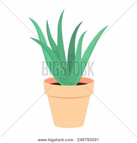 Green Aloe Vera Plant In A Pot. Vector Illustration Of A House Plant Isolated On White.