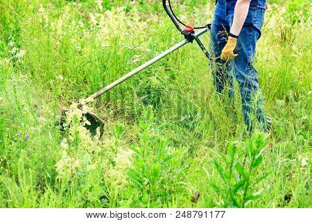 Closeup shot of the gardener cutting grass with lawn mower.