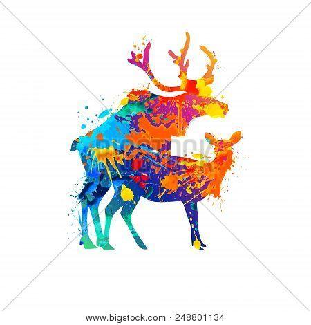 Silhouette Of Mating Deers. Vector Watercolor Splash Paint