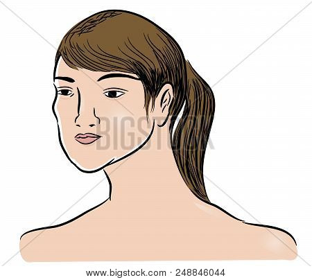 Head Of Woman.  Illustration Of Beautiful Face Of Woman. Illustration Of Beautiful Girl.