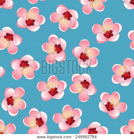 Prunus Persica - Peach Flower Blossom On Blue Background. Vector Illustration.