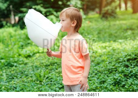 Adorable Little Kid Eating Candy-floss Outdoors At Summer Park. Boy Holding Cotton Candy. Little Boy