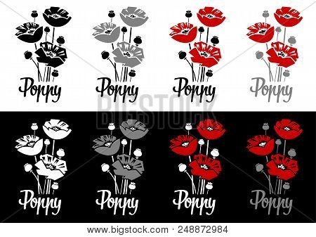 Vector Illustration - Poppy Flowers Isolated On White And Black Background For Logo, Posters Or Gree