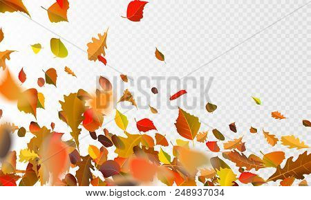 Stock Vector Illustration Autumn Falling Leaves On Transparent Checkered Background. Autumnal Foliag