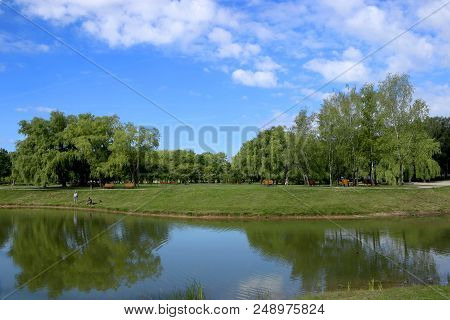 City Public Park Pond In Summer. Scenic View Of Park Pond.