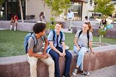 Group Of High School Students Hanging Out During Recess poster