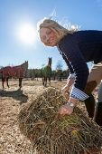 A beautiful blonde horse trainer tends to her horses on a farm poster