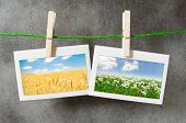 Picture frames with nature photos poster